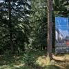 Wald_MMB5007